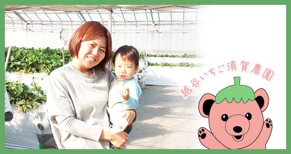 須賀農園のイチゴ狩りにご来園いただいたお客様の画像