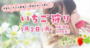 いちご狩りは1月2日(月)、10:00からオープンします!